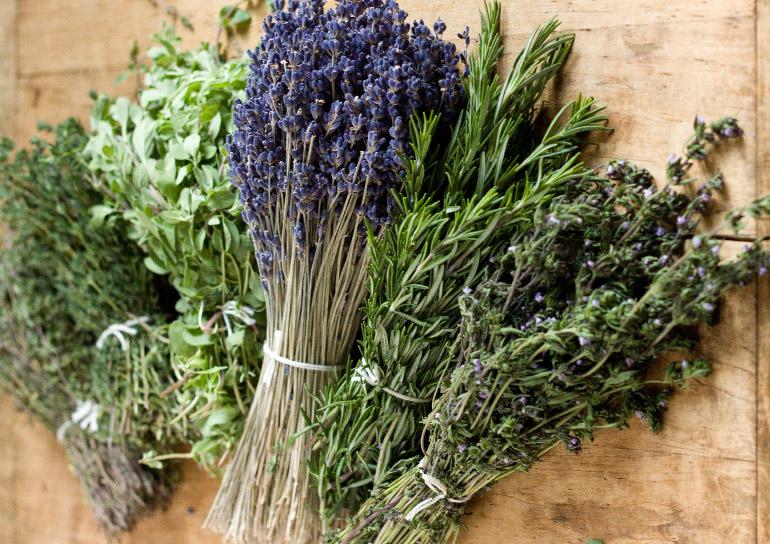 provenza-hierbas-herbes