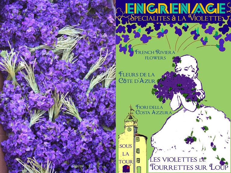 violeta-tourrettes-provenza