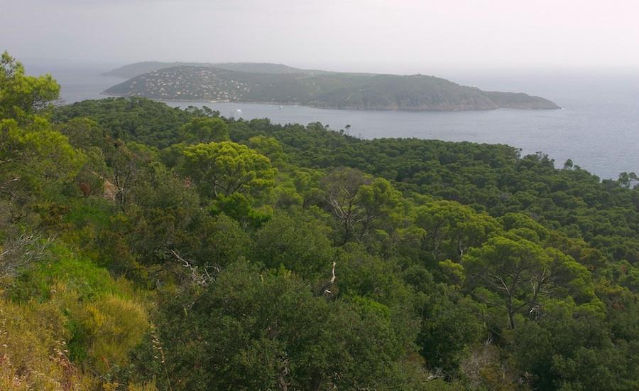 port-cros-islas-provenza