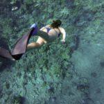 Buceo y snorkel en las Calanques de Marsella